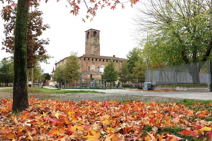 Cosimo autunno2