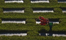 Armando cimitero 2